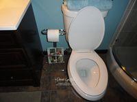 Toilet paper holder #2