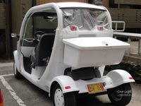 Golfcart car in Katchikan