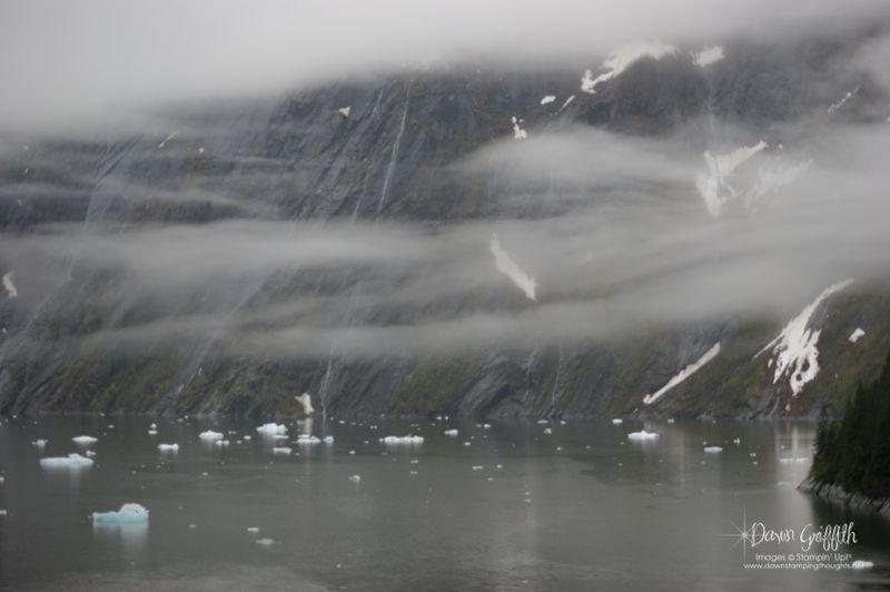 Tracy Arm Fjord  #1 Icebergs