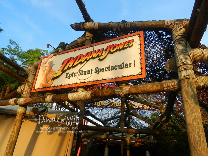 Final event Indiana Jones  stunt show and Dinner back stage