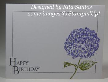 Birthday card from Rita Santos