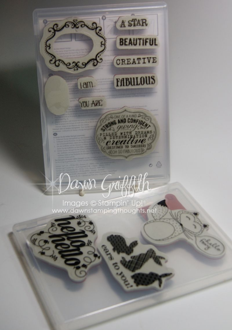 Clear Mount Stamp cases