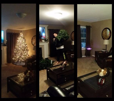 Before During and After  Christmas Tree