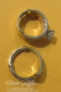 Ring guards on my rings done Dawn Griffith