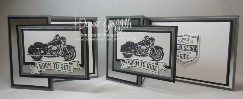 Z fold cards Dawn Griffith One Wild Ride stamp set from Stampin up