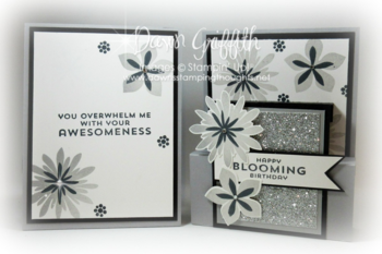 Smoky Slate and Basic Black step panel cards back and front #1