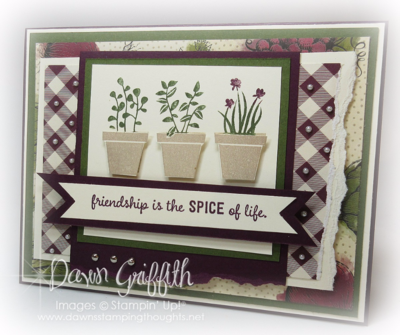 Stampin Up! Friendship is the spice of LIFE front Dawn Griffith Stampin'Up! Demonstrator  all the measurements and details are posted on my blog .