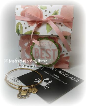 Cindy Haydon  gift bag #1