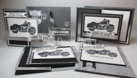 All Z fold cards One Wild Ride stamp set from Stampin up designed by Dawn Griffith